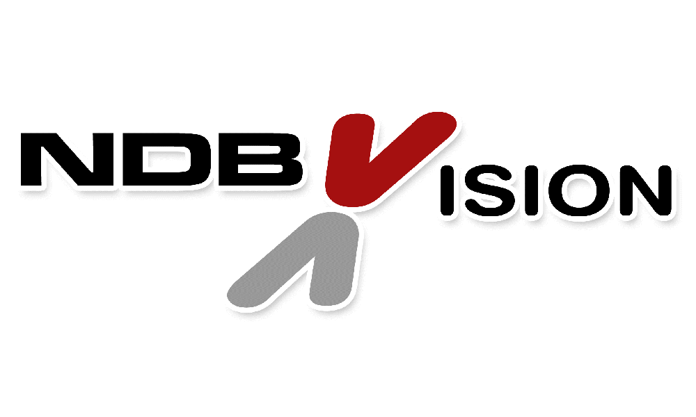 logo ndb vision partner brasile