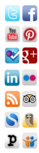 Social Media Marketing SMM icone
