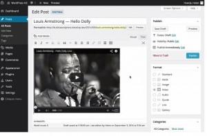wordpress4-video