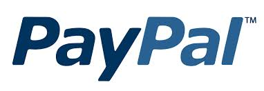 Pagamenti e-commerce: paypal e carte di credito
