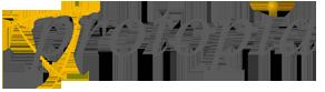 protopia logo1 Partner