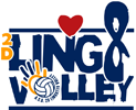 2D-Lingotto-Volley sponsor