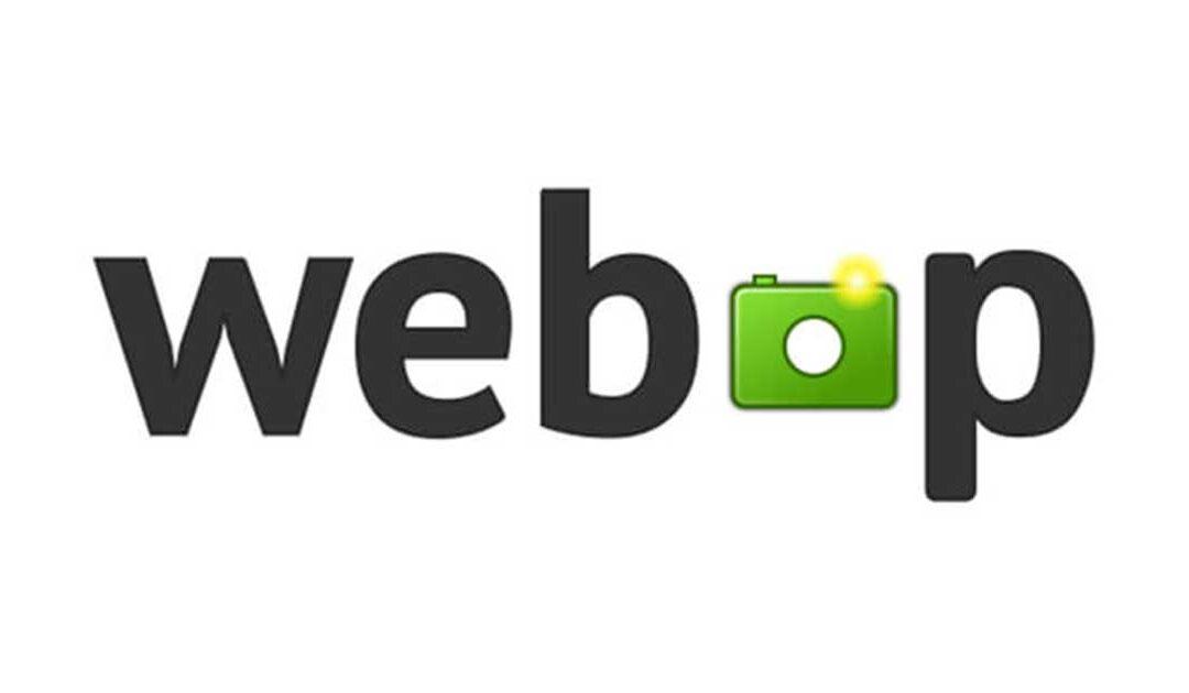 Le immagini con estensione webP: il nuovo formato che piace a Google